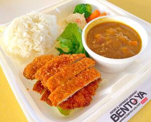 Curry w/ Pork Cutlet